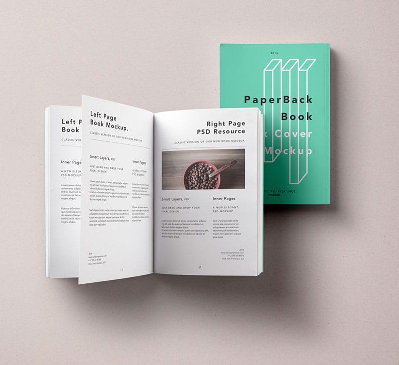 Paperback Book Mockup | Renovia